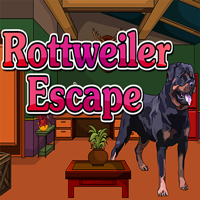 Rottweiler Escape