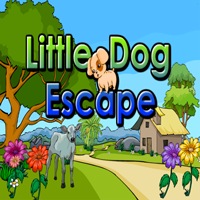 Little Dog Escape