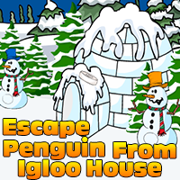 Escape PenGuin From Igloo…