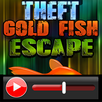 Theft Gold Fish Tank…