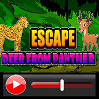 Escape Deer From Panther …