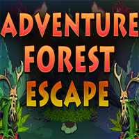 Adventure Forest Escape