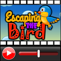 Escaping The Bird Walkthr…