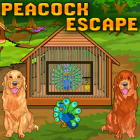 Peacock Escape