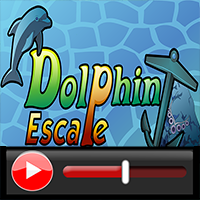 Dolphin Escape Walkthroug…