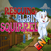 Rescuing Albino Squirrel …