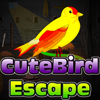 Cute Bird Esca…