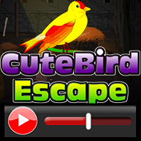 Cute Bird Escape Walkthro…
