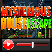 Mysterious House Escape W…
