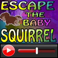 Escape The Baby Squirrel …