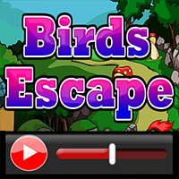 Birds Escape Walkthrough