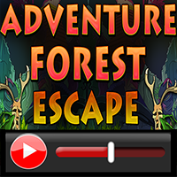 Adventure Forest Escape W…