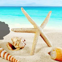 Games2Rule Fantasy Conch Beach Escape
